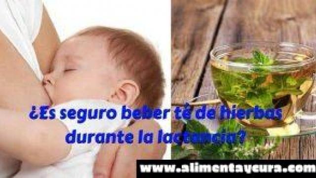 ¿Es seguro beber té de hierbas durante la lactancia?