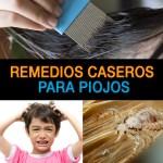 6 Remedios Caseros Para Eliminar los Piojos – [100% Naturales]