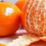 La Cáscara de Mandarina: Una fuente de fuerza increíble. 7 Problemas que puedes curar con ella