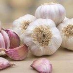El ajo: un potente estimulador del sistema inmunitario