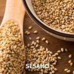 Cualidades medicinales, utilidades y usos del Sésamo