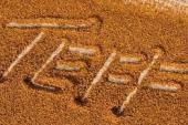 Teff Tohumu Nedir? Teff Tohumu Çayı Gerçekten Zayıflatıyor mu?