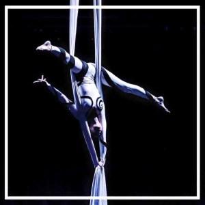 A Line In The Air Circus Performer Perth Australia Silks artist