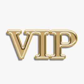 VIP-hosting V1