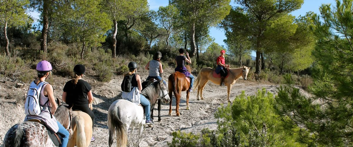 paseos guiados a caballo en alicante
