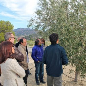 excursion aceite