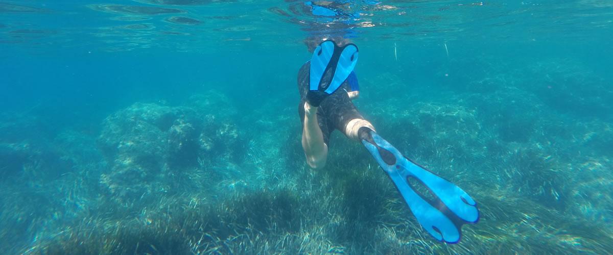 snorkel tabarca en alicante
