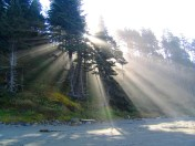raysoflight_1024_3si81qlju