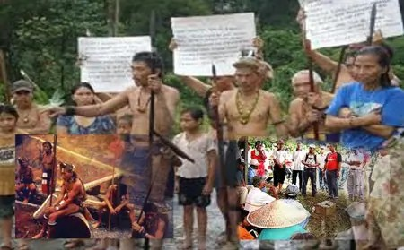 Image result for The lack of concern of the Dayak community over their customary land rights