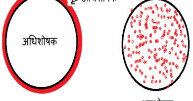 Adsorption Hindi