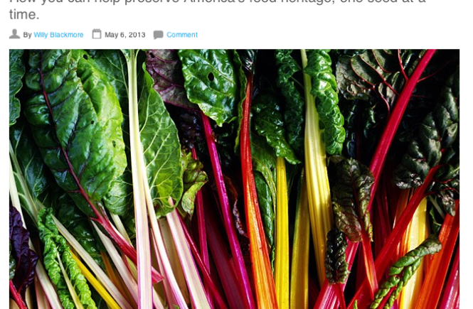heirloom rainbow chard
