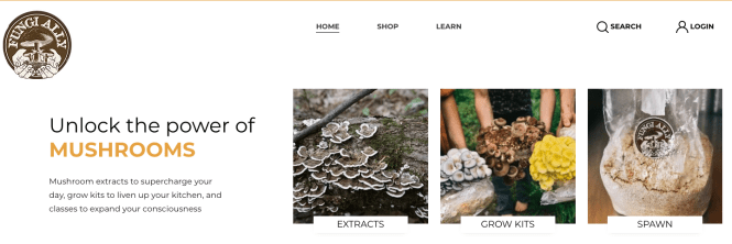mushroom growing kits