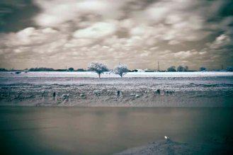 Faversham Creek, Kent