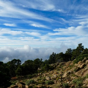 Sierra Bermeja above the clouds