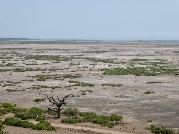 View from Observation Hill Amboseli Kenya