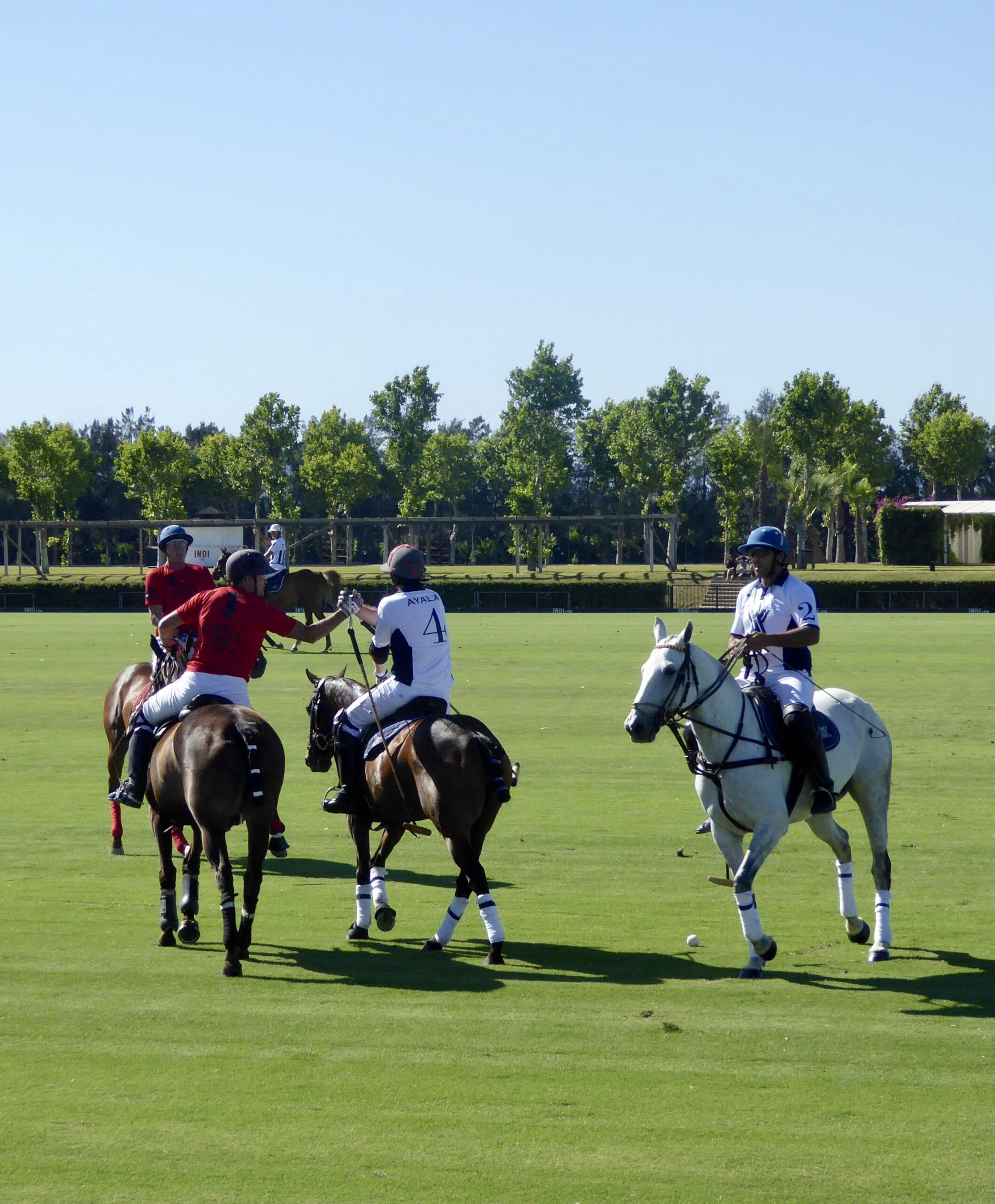 Santa Maria Polo Club Sotogrande