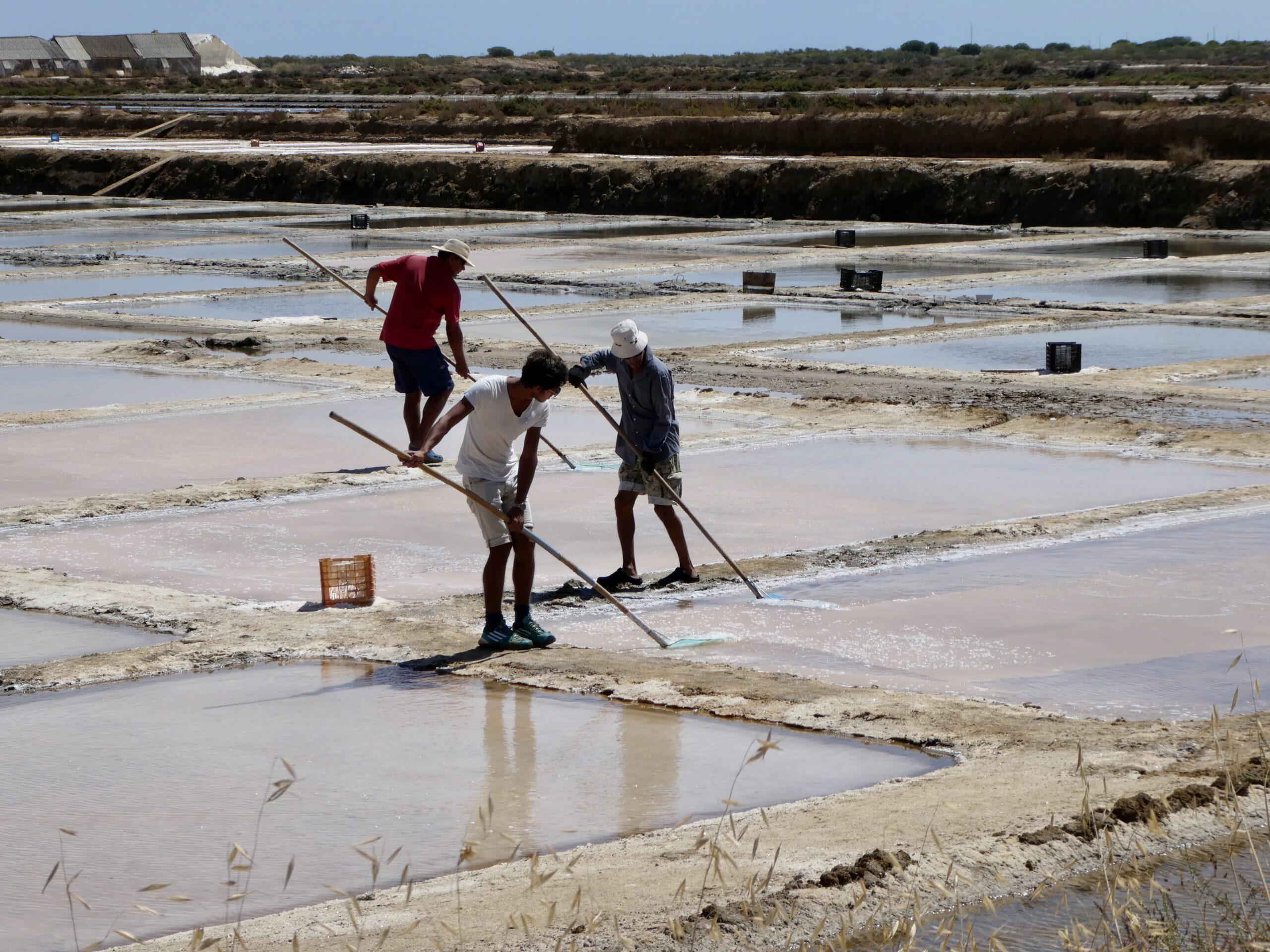 Workers at the Tavira Salt Pans