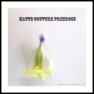 Haute Couture Primrose, Flower Sculpture Photography by Alison Shull