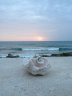 sunrise at Casa Coral