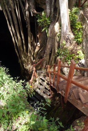This cenote at least had a set of stairs; some are just a hole in the ground with a rope descending into the unknown