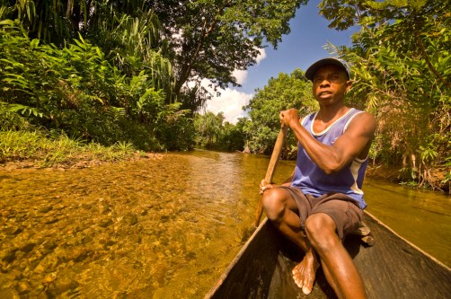 Paddling through the Masoala forest in a dugout