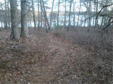 halfway trail 12.4.16