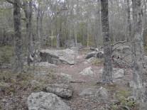 pinehills rocks 2