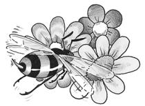 Illustrazione iconica dell'articolo