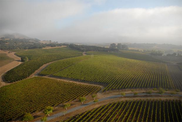 Tor Kenward Hudson Vineyard Chardonnay