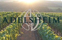 Adelsheim vineyards header