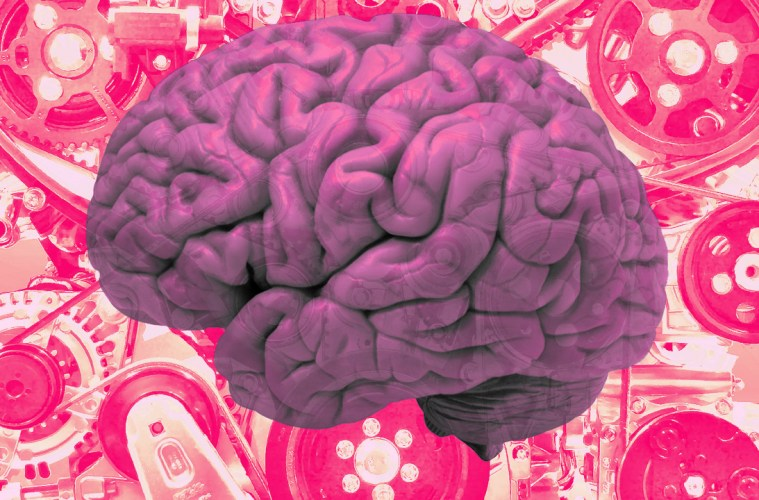 FIVE WAYS TO USE YOUR BRAIN TO BUILD A BETTER BUSINESS