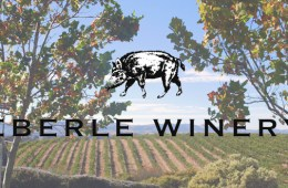Eberle Winery header