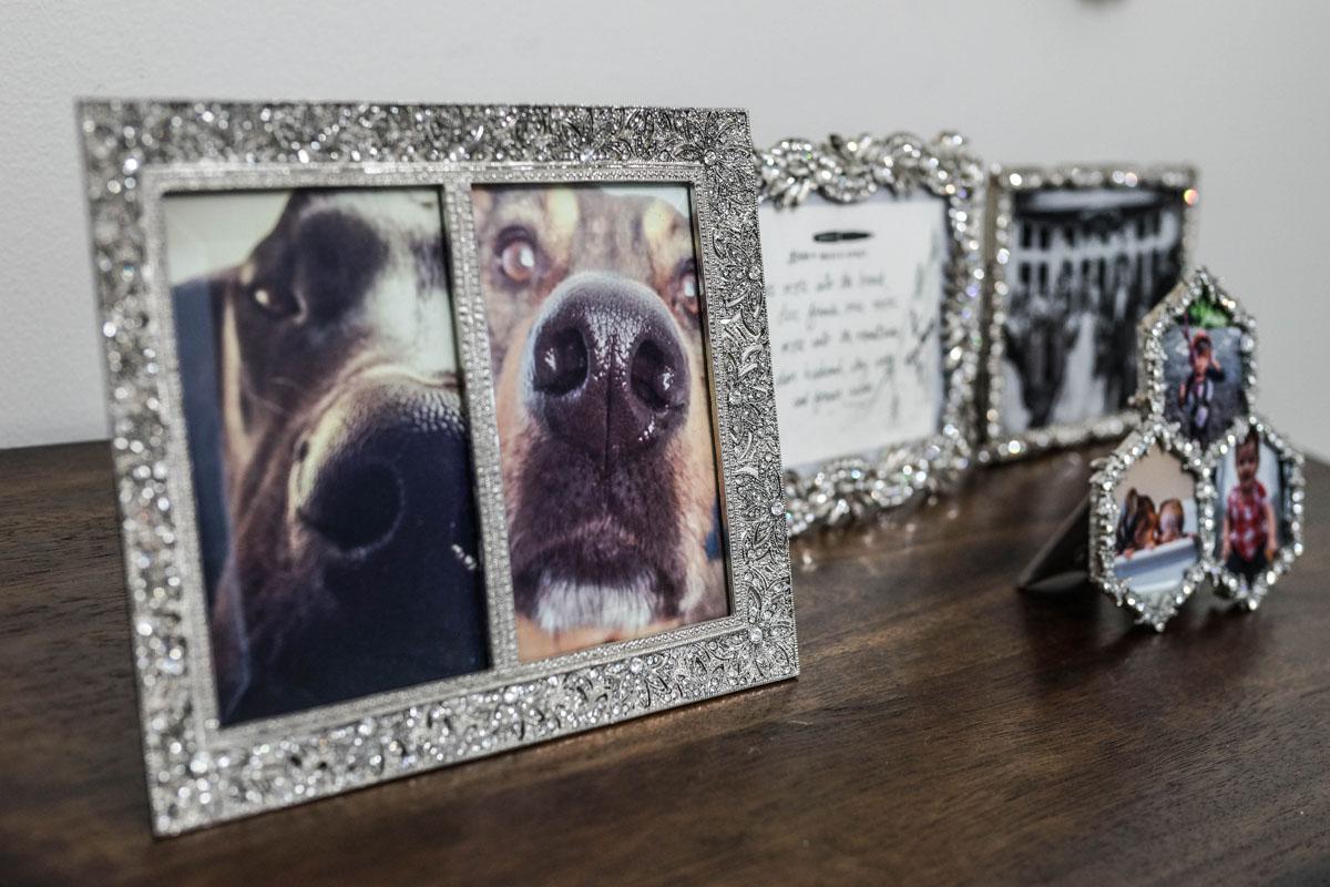 frames edit-1