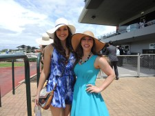 Day at the Races