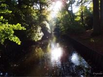 Solhof park Aartselaar