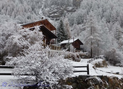 Neighbouring chalets