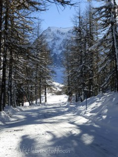 Track up the valley to Mont Collon