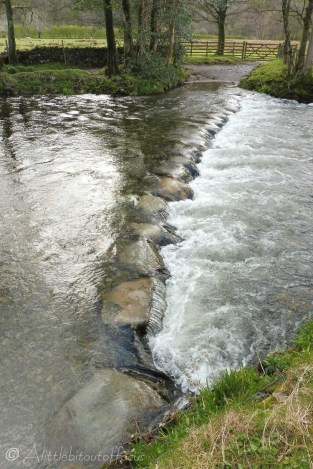 17 Stepping stones