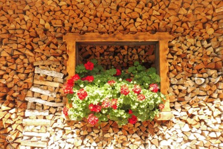 11 Wood pile with flowers