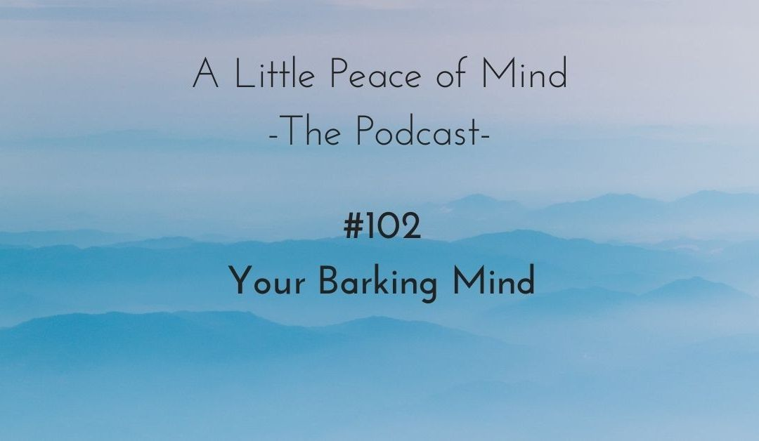 Episode 102: Your Barking Mind