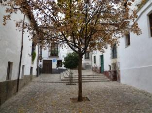 Granada (295)