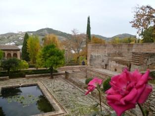 Granada (632)