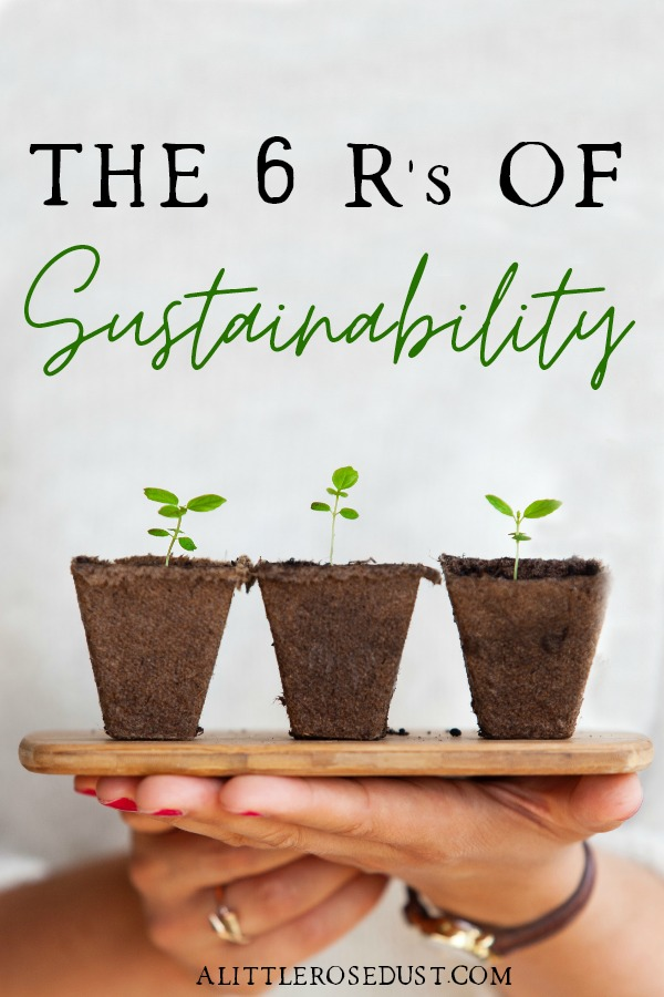 the 6 R's of sustainability