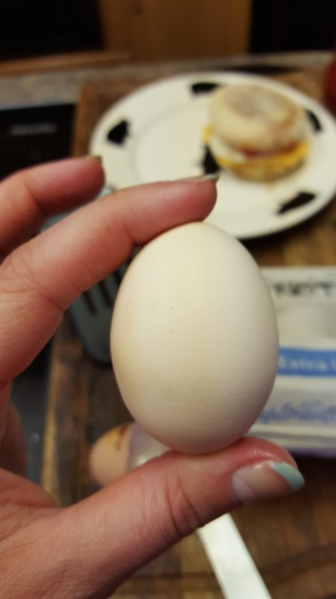 Our smallest egg