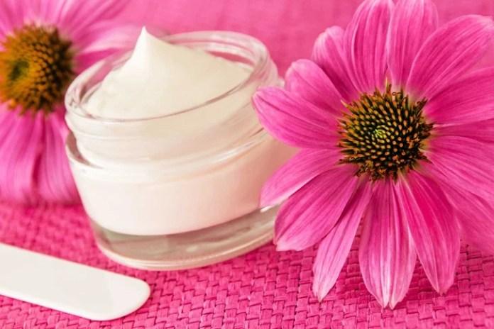 Echinacea natural healing cream and flowers