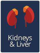 kidney and liver health tips