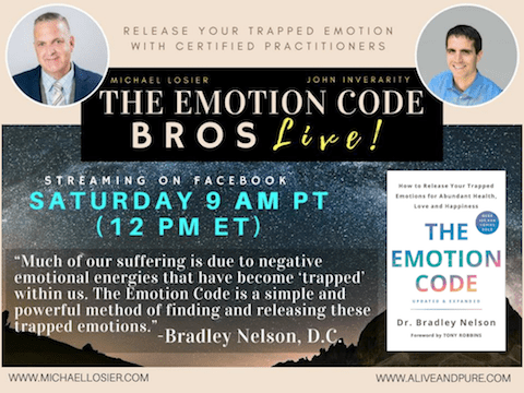 Episode #95 Negative Self Talk – Beating Yourself Up? Let the Emotion Code Bros help!