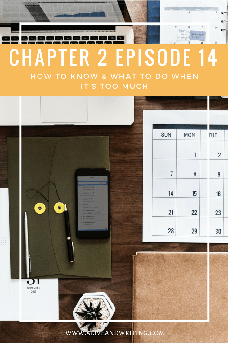 Alive And Writing Chapter 2 Episode 14 How to Know What to Do When It's Too Much