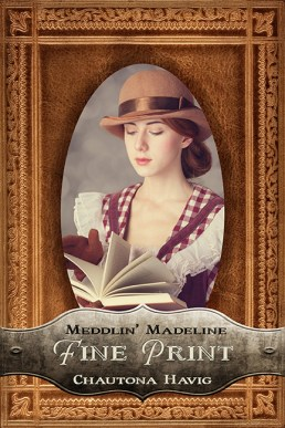 Fine Print: Book 3 of the Meddlin Madeline Series by Chautona Havig