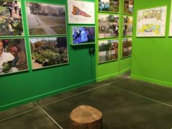 Grass Green Wall, Bonnie Ora's installation at PAV